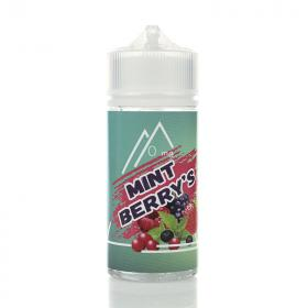 Жидкость Vape Vault Mint Berry's, 100 мл